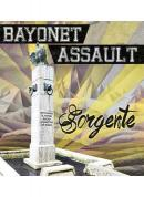 Bayonet Assault ‎– Sorge...